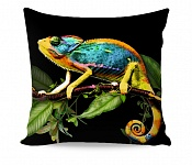 Pillowcase Chameleon