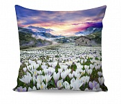 Pillowcase Crocus
