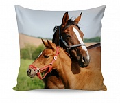 Pillowcase Horse Love