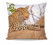 Pillowcase Leopard Live