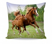 Pillowcase Little Horse