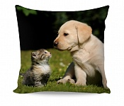 Pillowcase Puppy with Kitten