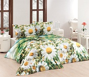 Bedding Daisy