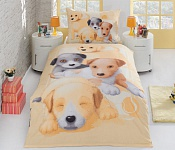 Bedding Puppies