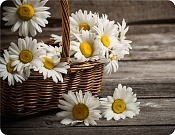 Placemat Basket with Daisies
